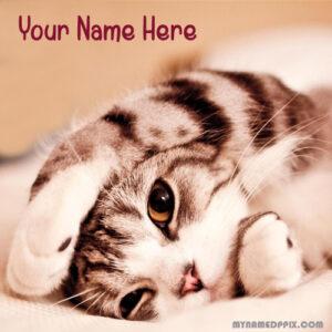 Write Name On Beautiful Cat Cute Profile Image