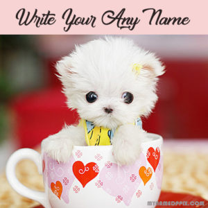 Write Name On Cup In Cat Cute Profile