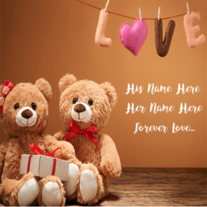 Cute Teddy Lover Names Write Profile Image Edit Free