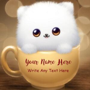Write Name Cute Cat Beautiful Whatsapp Profile Set Pics