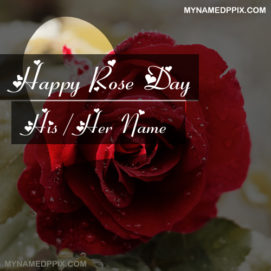 Beautiful Happy Rose Day Wishes Name Image Editor Free