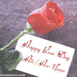Create Name Happy Rose Day Greeting Card Editing Online Photo