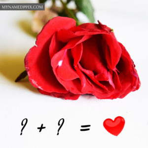 Red Rose Love Profile Alphabet Combination Couple Images