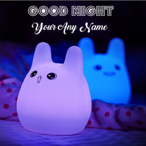 Write Name Send Good Night Cute Images Online Create Cards